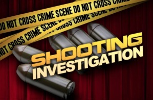 Orleans Gardens Apartments Shooting, Charleston, SC, Leaves One Man Injured.