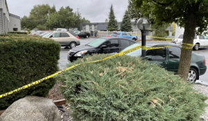 Jackson Purdie Identified as Victim in Fatal Spokane Valley, WA Hotel Parking Lot Shooting.