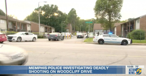 Amise Gales Fatally Injured in Memphis, TN Apartment Complex Shooting.